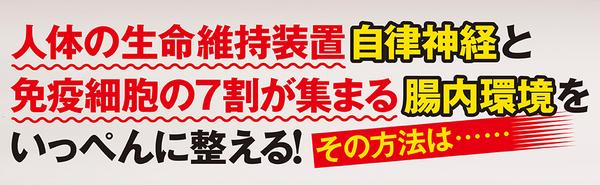 nagaiki_V2___.jpg