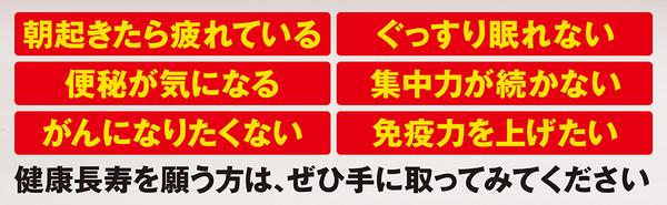 nagaiki_V4___.jpg